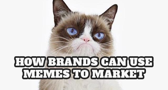 How to use memes in your marketing strategy