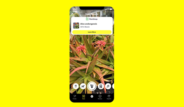 Snapchat Lens Scan